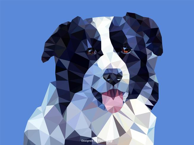Retrato abstracto del perro de Border Collie en diseño del vector de Low Poly