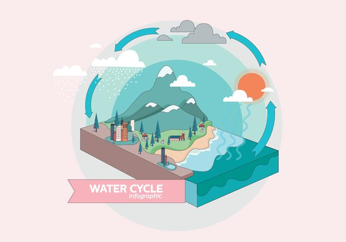 Water Cycle Infographic Vol 3 Vector