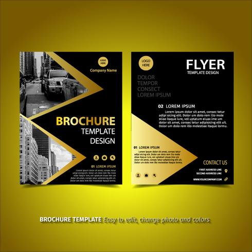 Triangle Brochure Design