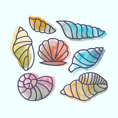 Vector Hand drawn Seashells
