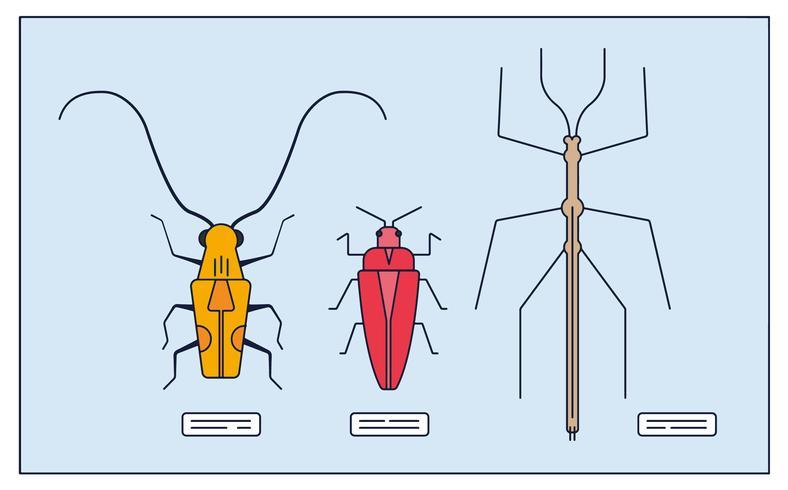 Vector de colección de insectos