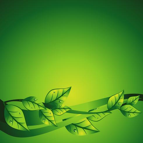 vector green leaf