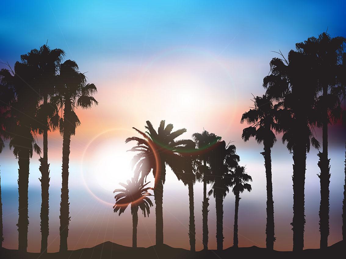 Vector Illustration Tree: Summer Palm Tree Landscape