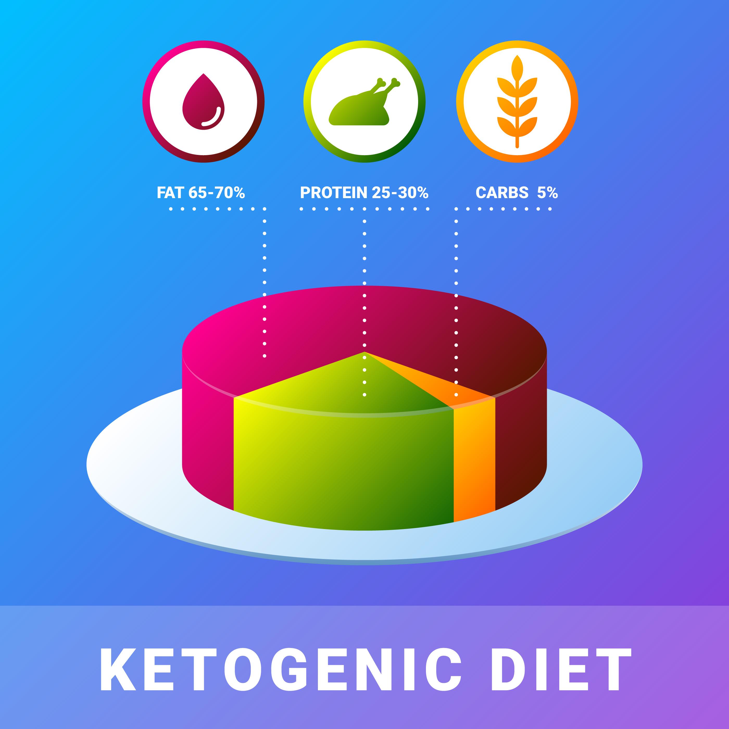 Keto Diet Infographic Flat Illustration