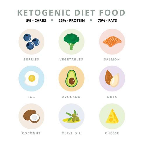 Ketogenic Dieet Vector Illustrator