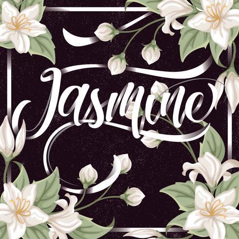 Jasmine bakgrund