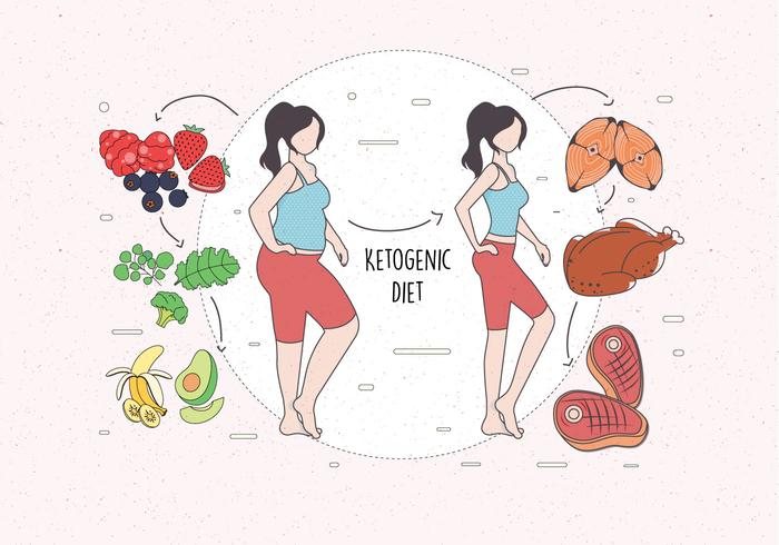 Vector de dieta cetogénica
