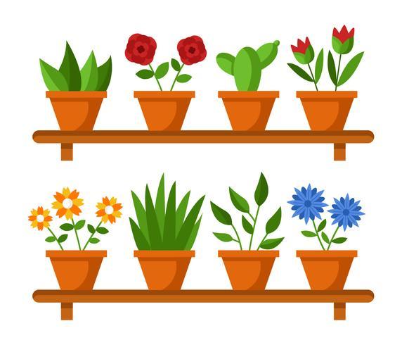 Huis Plant Vector