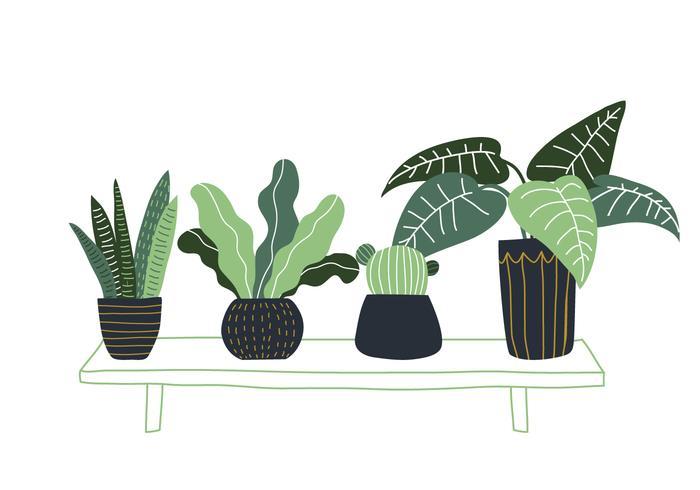 Plante en pot dessinés à la main
