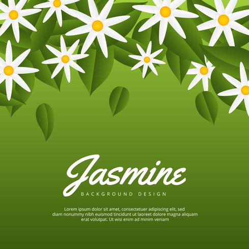 Jasmine Flower Background vector