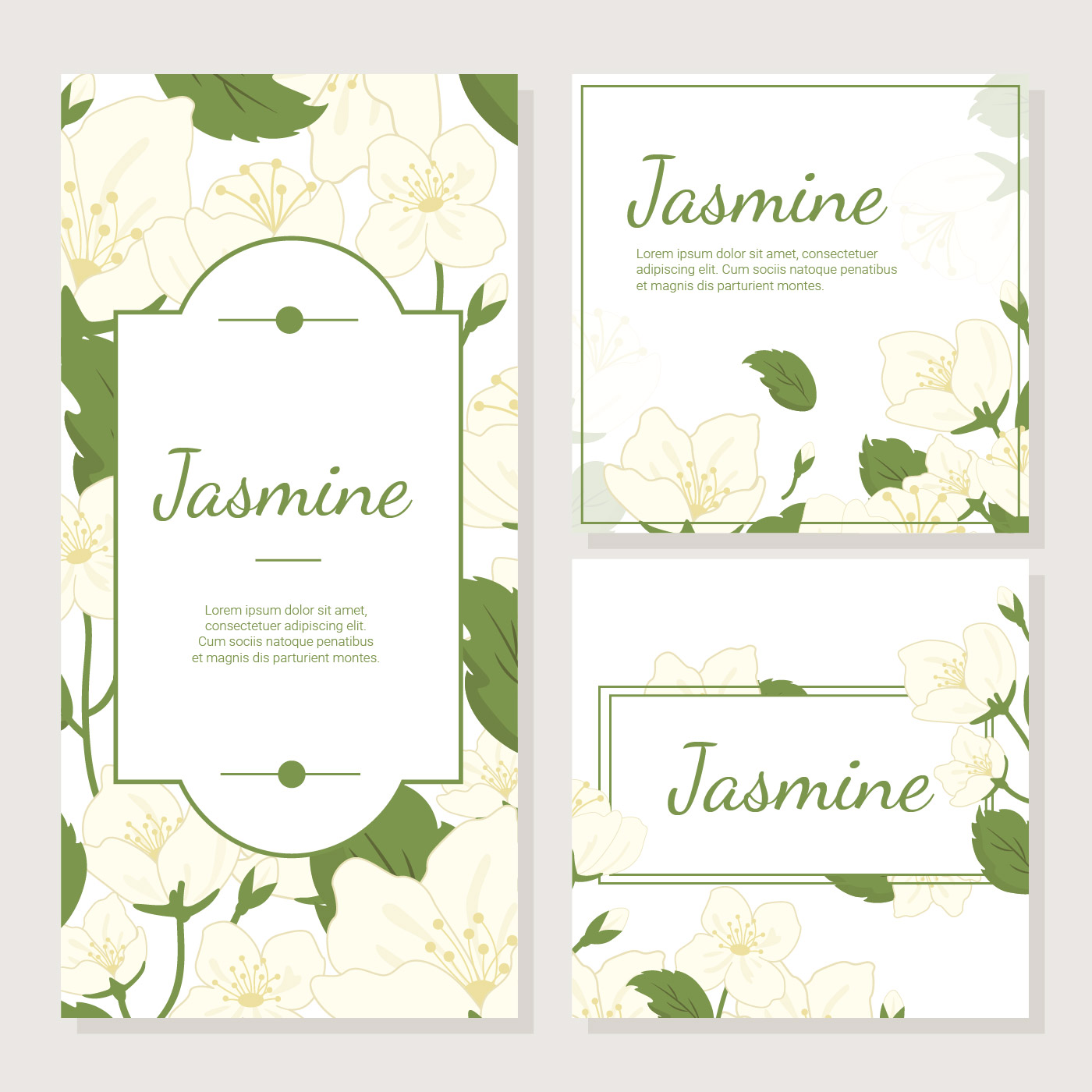 Invitation Card With Jasmine Flower Vector Download Free Vector
