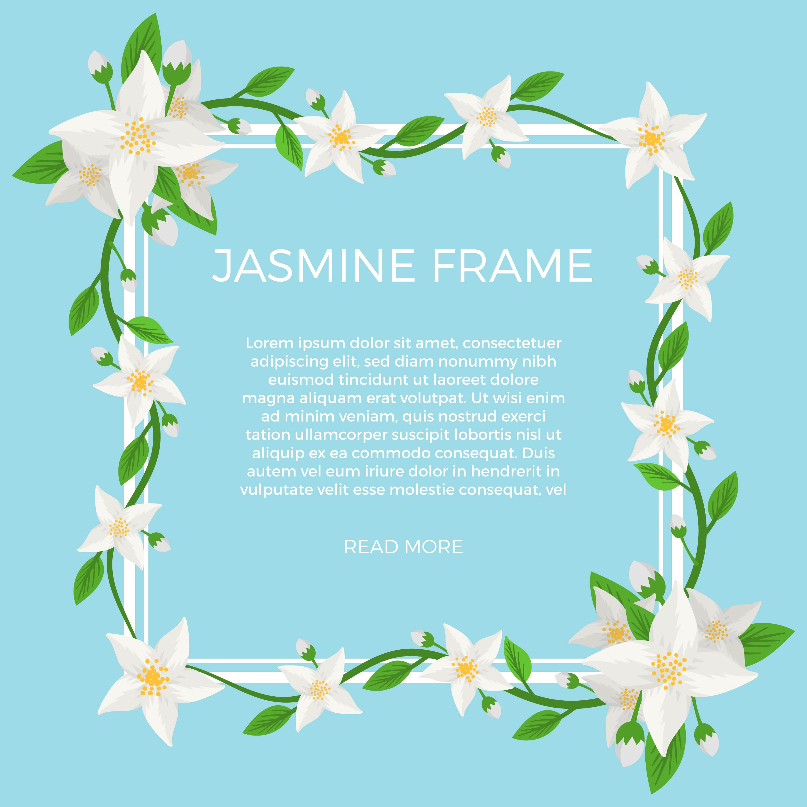 Flat Jasmine Flower Background Template Vector Download Free
