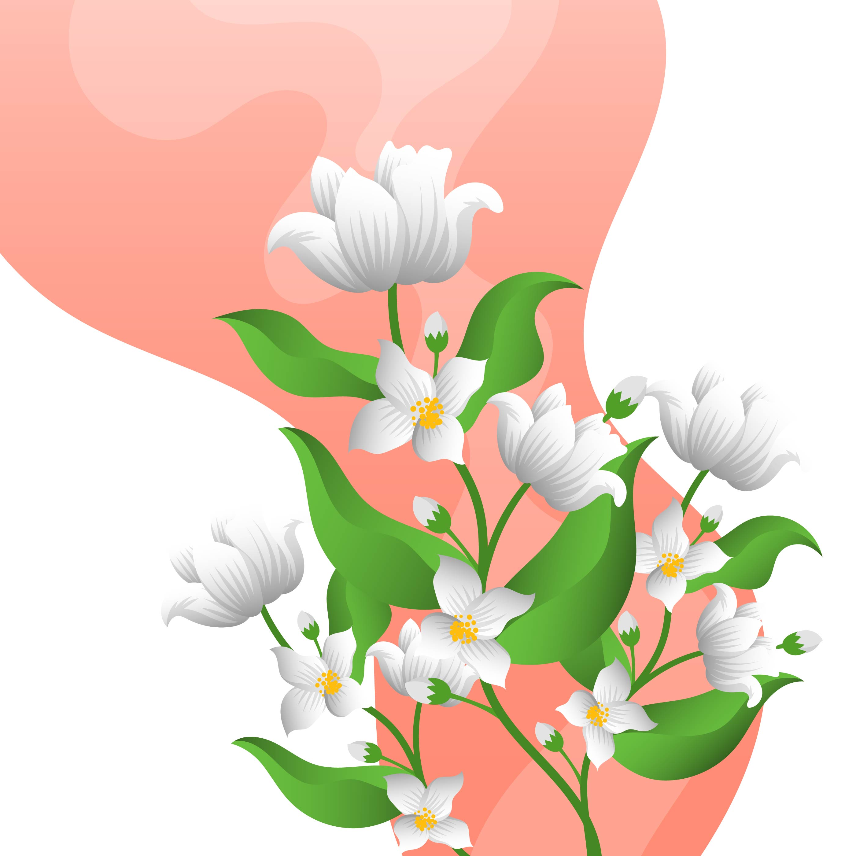 Flat Jasmine Flower With Gradient Background Template Vector