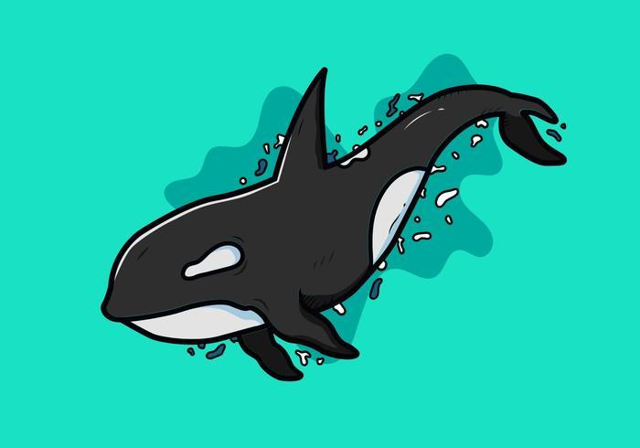 Vector de orcas asesinas