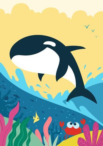 Killer Whales hoppa