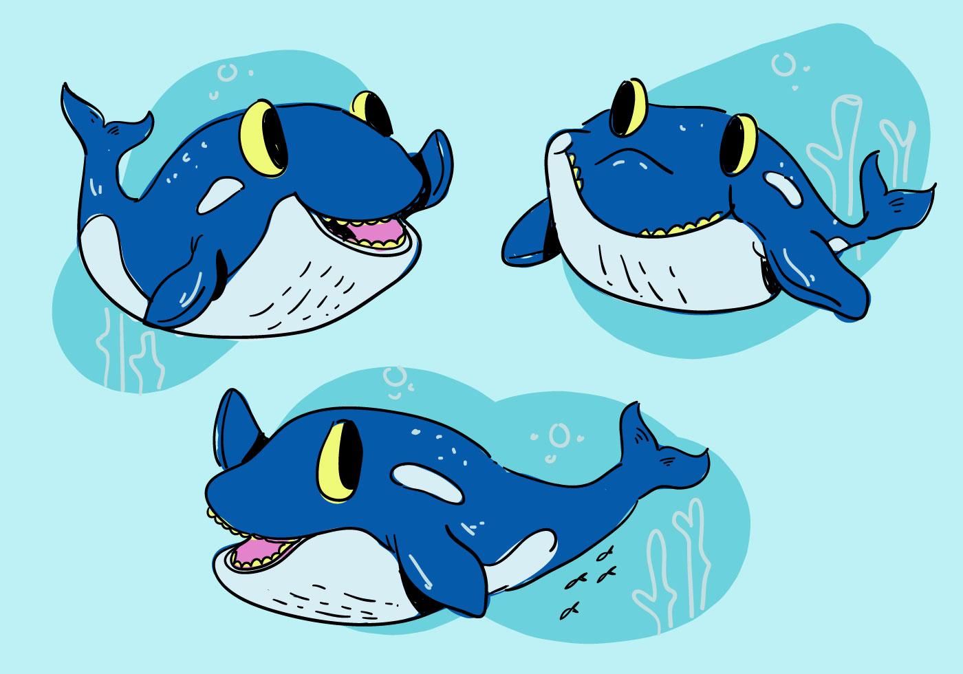 Orca Whale Cartoon