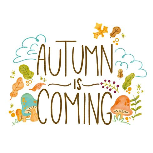 Autumn Background with Leaves, Branches And Mushrooms vector