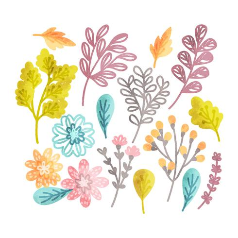 Éléments floraux dessinés à la main de vecteur