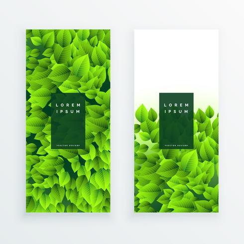 uppsättning grön löv banner