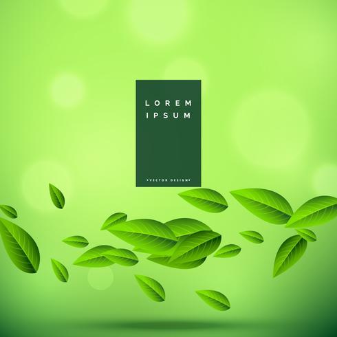 ekologisk grön bakgrund med flytande löv