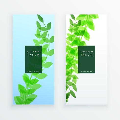 diseño de banner verde hojas verticales