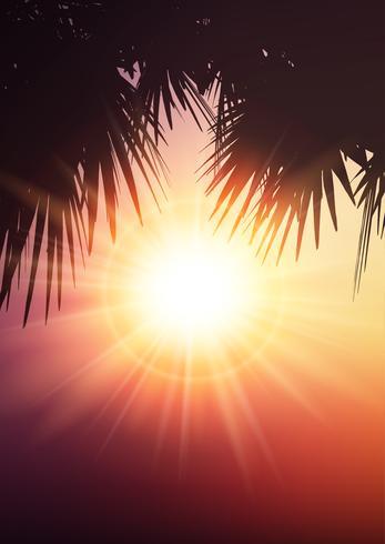 Folhas de palmeira em fundo de verão