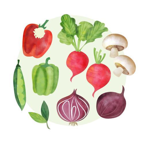 Set aquarelle de vecteur de légumes