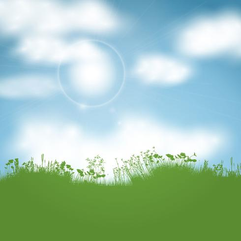 Sunny landscape