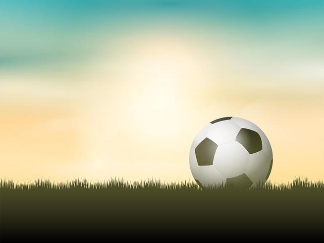Soccer ball or football nestled in grass