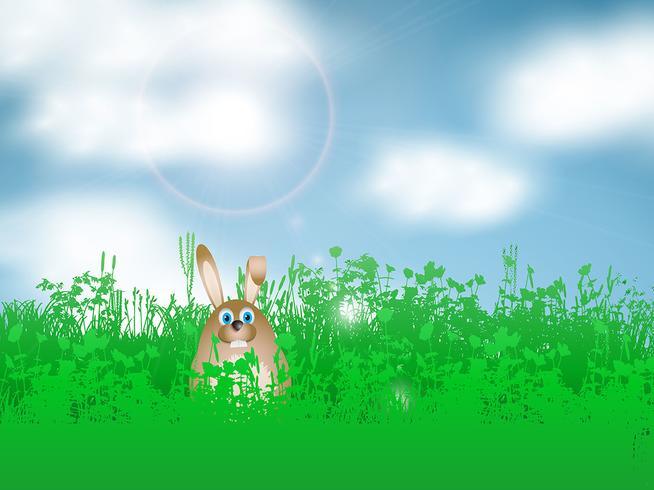 Påskkanin i gräset