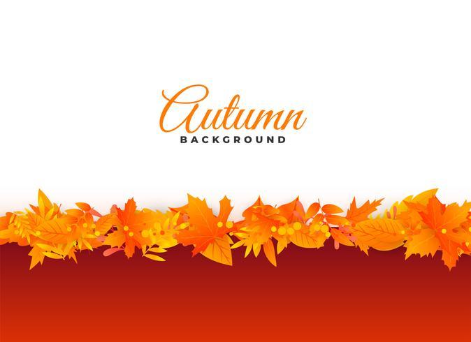 elegante autunno foglie design