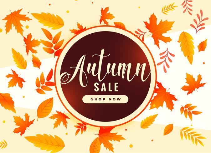 feuilles d'automne fond avec vente et détails promotionnels