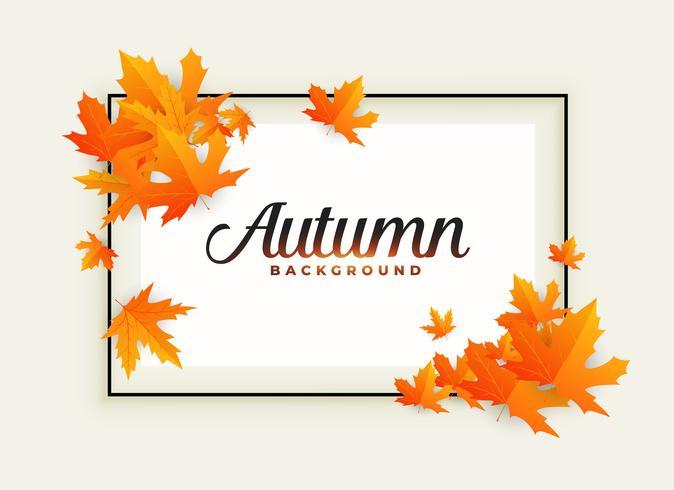 hermoso fondo de otoño con espacio de texto