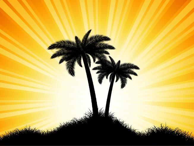 Palmsilhouetten op zonnige achtergrond
