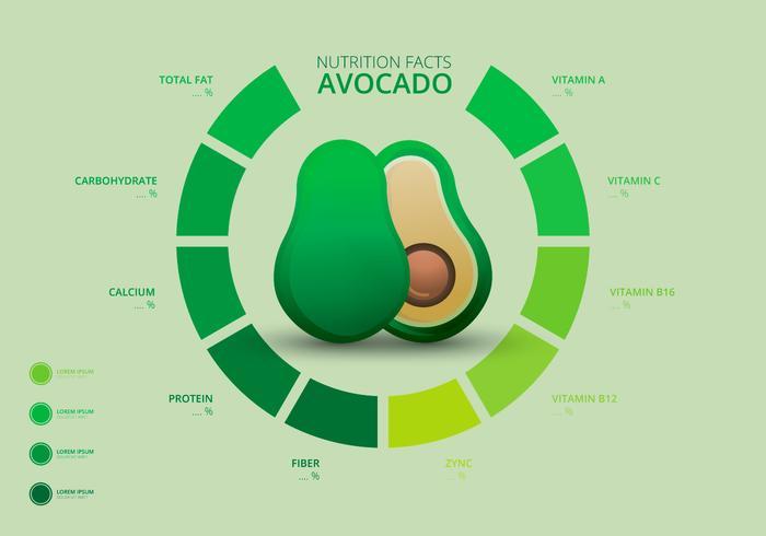 Fatti nutrizionali dei modelli di Avocado Infographic