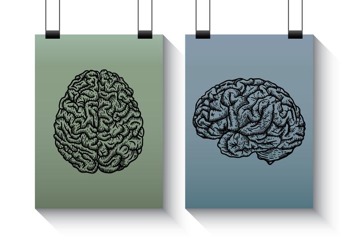 Gravure cerveau
