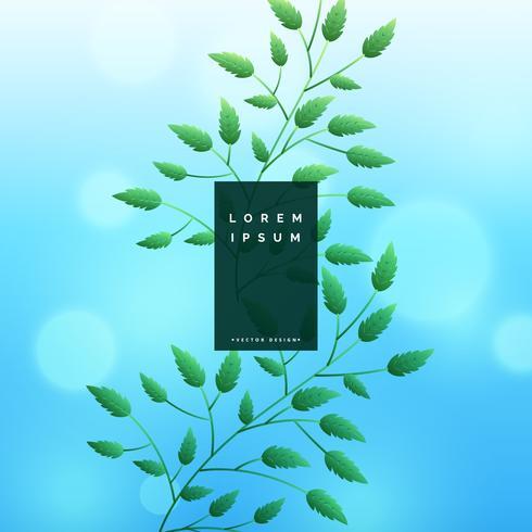 blå löv bakgrund med bokeh effekt
