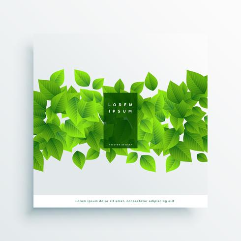 green leaves card cover background