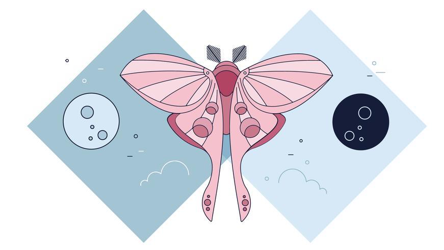 Moth Moons Vector