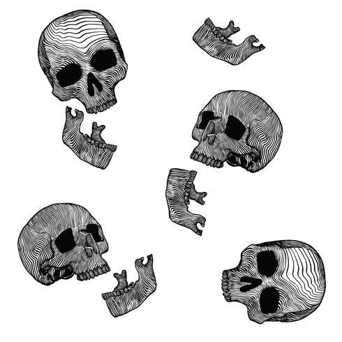 Esqueleto Linocut Vector Pack v2