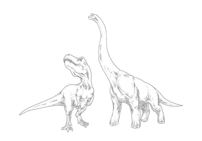 Dinosaure Dessin Réaliste Telecharger Vectoriel Gratuit