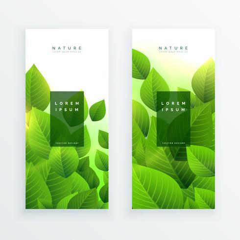 resumen verde deja pancartas verticales