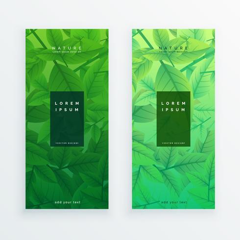 conjunto de faixa de eco verde folhas