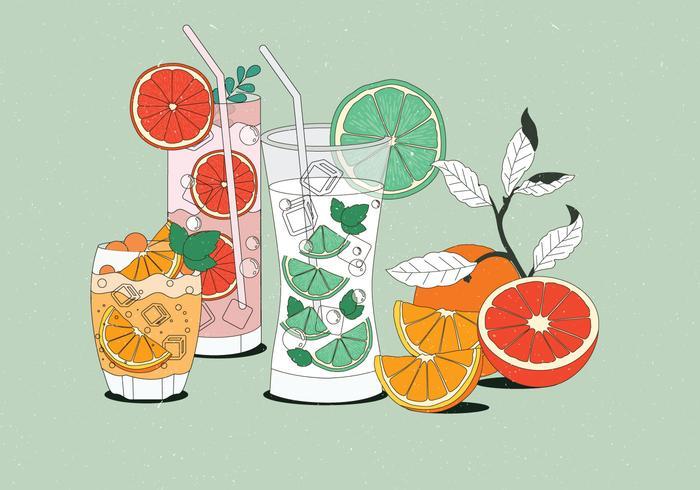 Vintage citrus bebidas ilustrações vetoriais