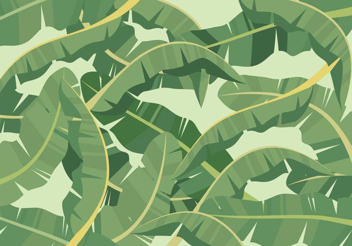 Fundo de folha de bananeira vetor