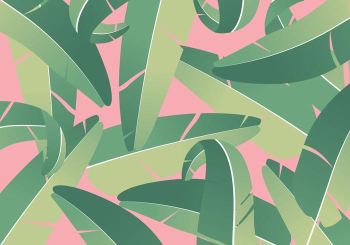 Tropical Banana Leaves Background vector