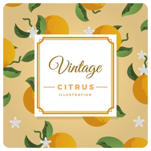 Flat Vintage Citrus Background Vector Illustration