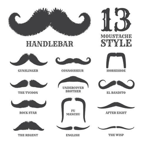 Isolated Silhouette Moustache Collection With Name of Style. Vec vector
