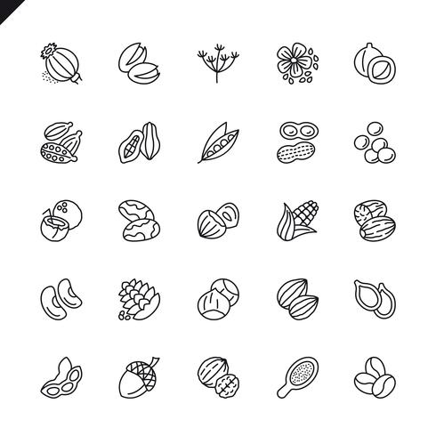Thin line nuts, seeds and beans elements icon set vector