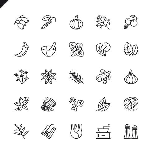 Thin line spices, condiments and herbs icon set